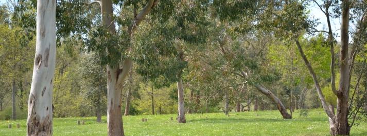 Coulée verte des Monges - espaces verts