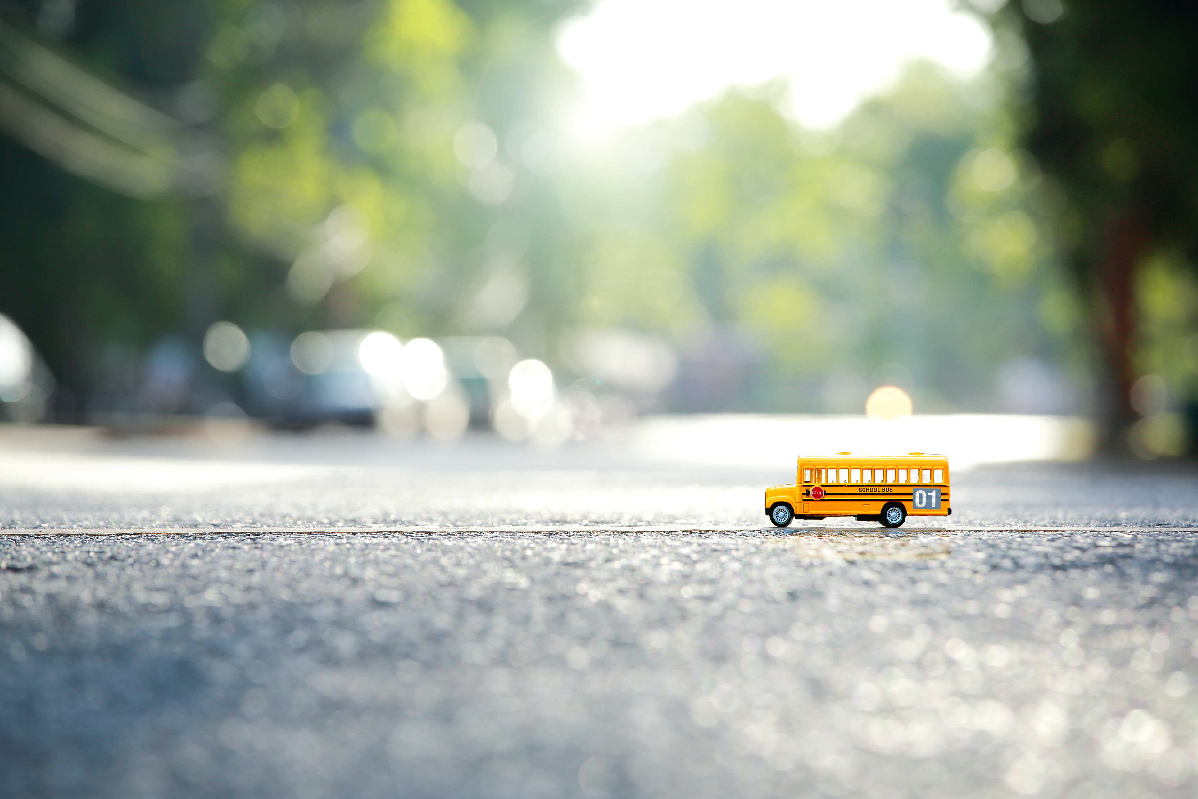 Yellow school bus toy model the road crossing.Shallow depth of field composition and afternoon scene.